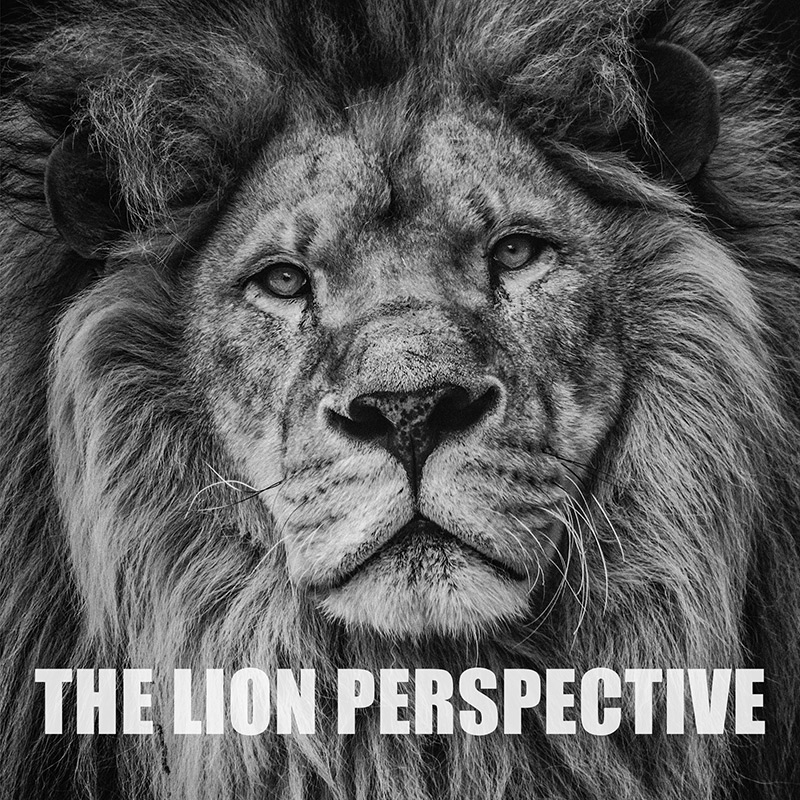 The Lion Perspective Podcast Cover